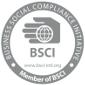 bsci-logo